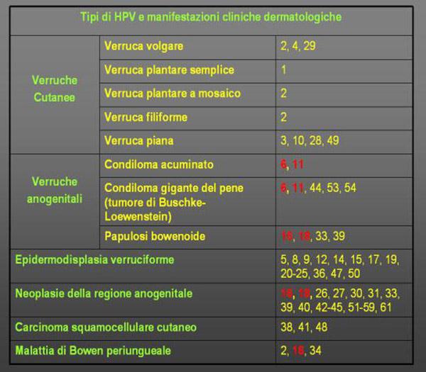 tabnella relativa ad HPV